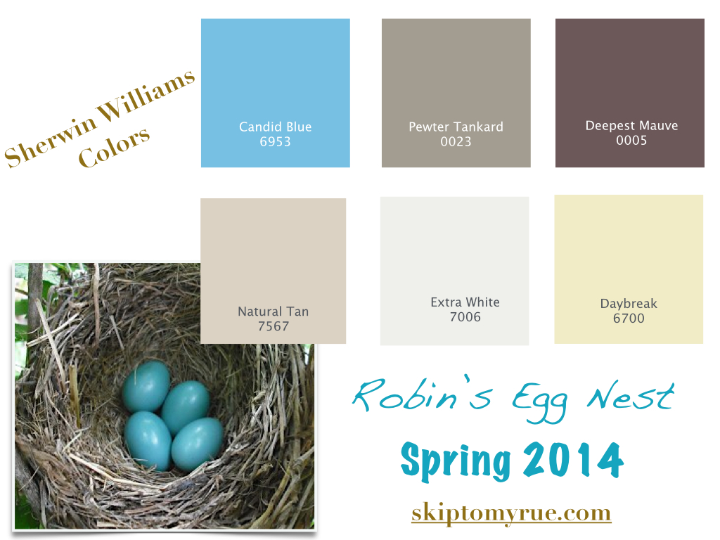 robin 39 s egg blue by benji moore colors i would paint pinterest robin egg blue robins egg. Black Bedroom Furniture Sets. Home Design Ideas